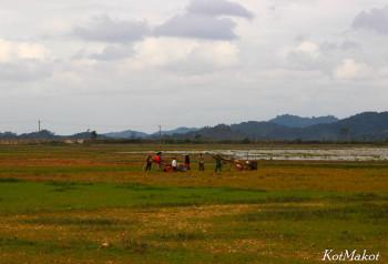 Колорит Вьетнама- вьетнамская деревня