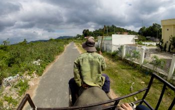 Покататься на слонах в Даклаке-6