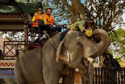 Покататься на слонах в Даклаке-3